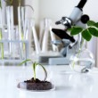 Тканевая диагностика (NPK в растении)