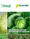 Технология выращивания белокочанной капусты 2015